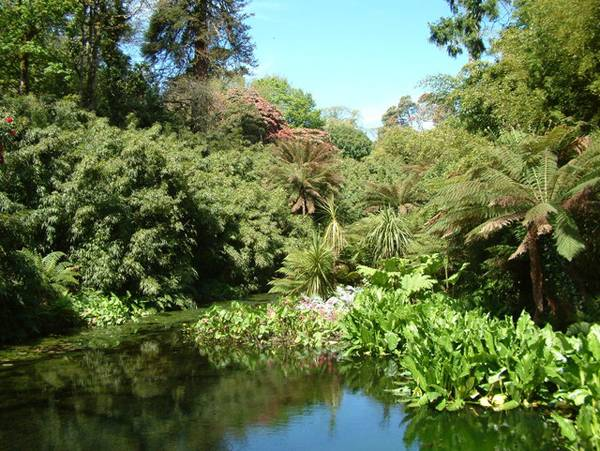 """Creative Commons The Lost Gardens of Heligan. By Ian Knox,  licensed under CC 2.0"