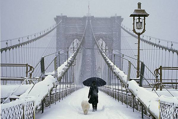 Woman walking Dog in the snow on the Brooklyn Bridge in the New York City; credit: Zhuang Mu / shutterstock.com