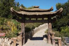San Antonio Japanese Tea Garden | San Antonio, TX