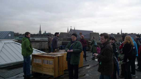 Visit by local community groups to Dublin Urban Farm