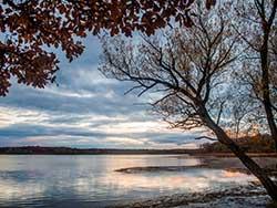 Lakeshore Nature Preserve, credit: Xiang Lu