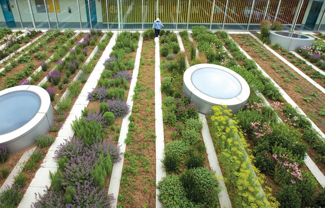 Top 4 Urban Agriculture Books for Landscape Architects