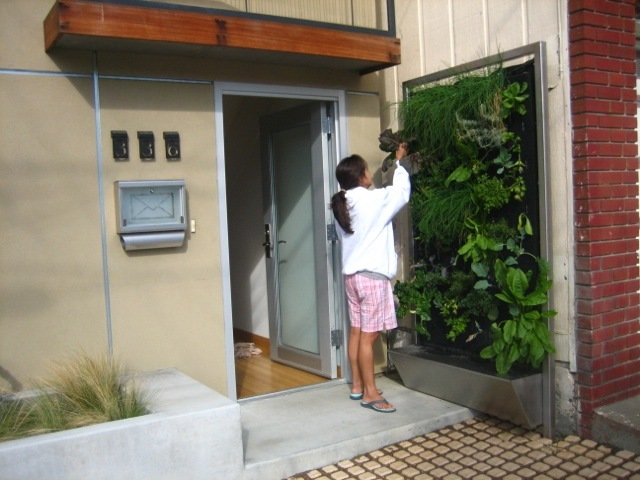 Vertical Garden System at the Screen House | San Francisco, CA