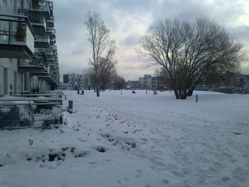 Appreciating Green Space through a Copenhagen Winter