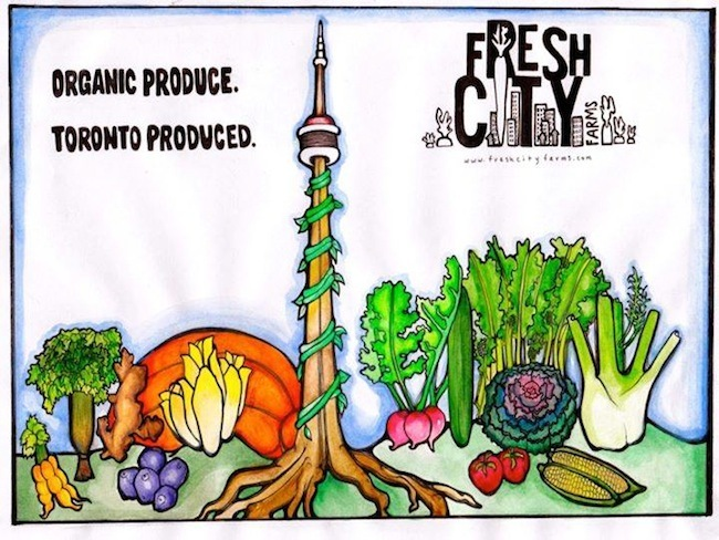 Urban Agriculture Series #6: Interview with Ran Goel – Fresh City Farms Founder