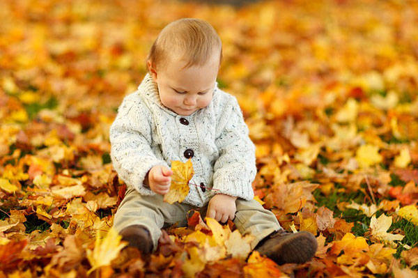 Autumn- CC0- Natural Play