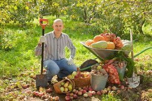Healthy community engagment; image credit: Iakov Filimonov / shutterstock.com