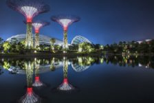 Filmtastic Fridays: Experience the Award-Winning Gardens by the Bay in Singapore