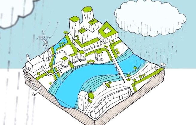 Filmtastic Fridays: Water Sensitive Urban Design