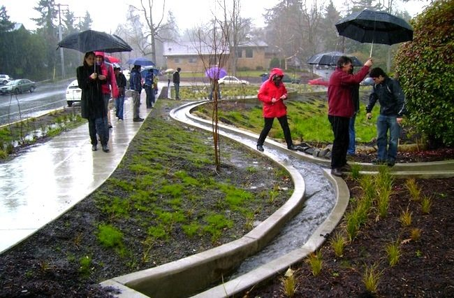 Penn State University Presents Stormwater Management as Artful Rainwater Design
