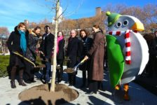 A Behind-the-Scenes Sneak Peek at Governors Island's New Park in NYC