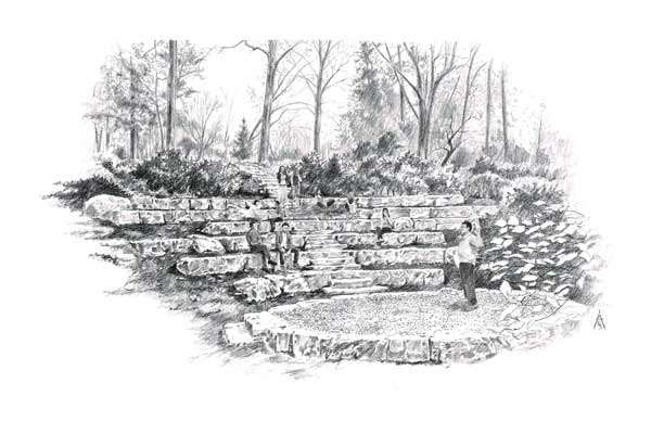 sketchy | A woodland amphitheatre