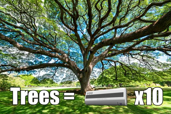 Trees increase value and save money; image credit: shutterstock.com, modification by SDR