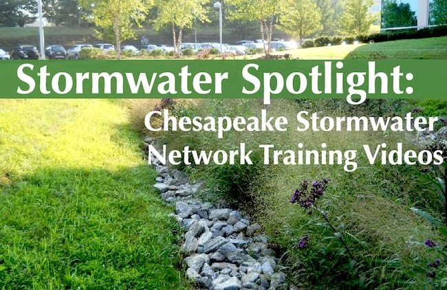 Stormwater Spotlight: Chesapeake Stormwater Network Training Videos