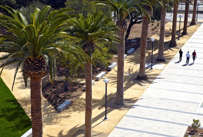 The Power of Landscape Architecture on the American College Campus