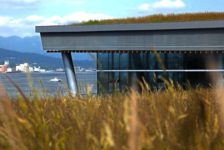 Filmtastic Fridays – Vancouver's 6 Acre Living Roof