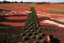 Filmtastic Fridays: Australia Announces Its First Festival of Landscape Architecture