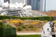 What is Landscape Architecture?