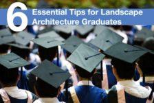 6 Essential Tips for Landscape Architecture Graduates