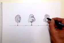 Hand Drawing Tutorial: How to Draw a Tree