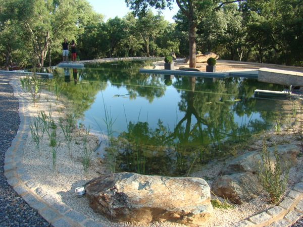 Natural Swimming Pools Designed With Nature - Land8