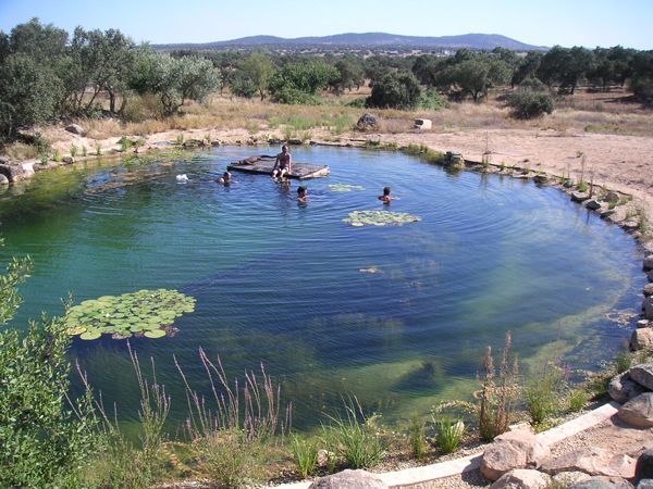 Natural swimming pools designed with nature land8 for Swimming pond design