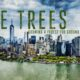 Filmtastic Fridays: The Trees – Growing a Forest for Ground Zero