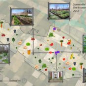 The Tricky Business of Zoning for Urban Agriculture