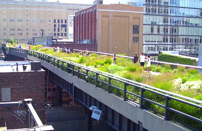 NYC's High Line Park Celebrates 5th Anniversary