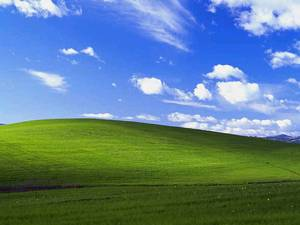 Bliss-Windows-Desktop