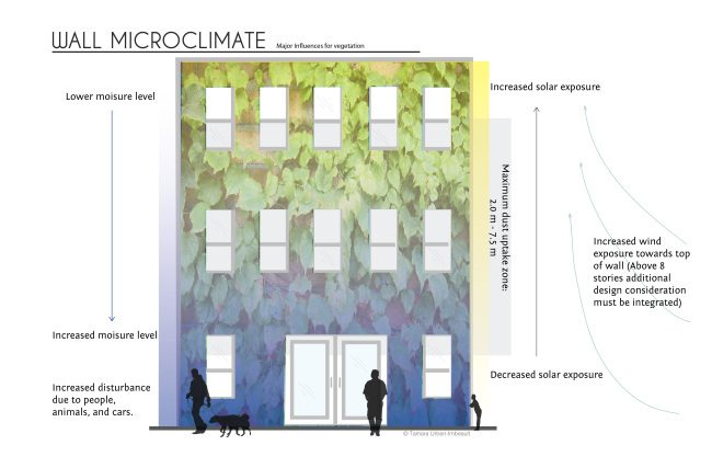 How Different Climates Affect the Growth of Vertical Gardens