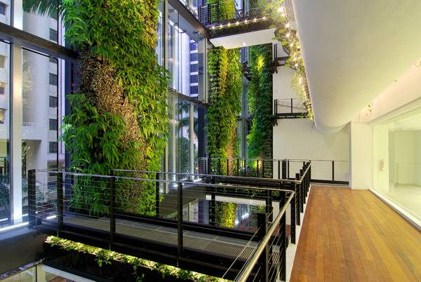Green wall at Cecil street. Photo credit: Tierra Design + POD