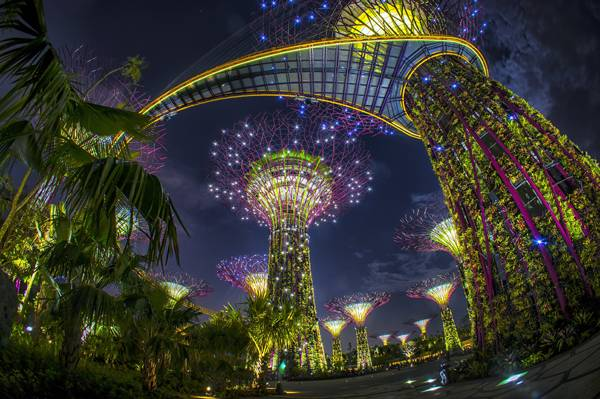 Gardens by the Bay in Singapore. Credit: Grant Associates
