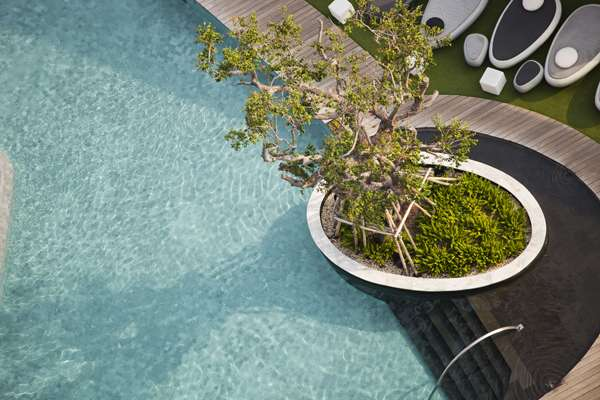 The Garden of Hilton Pattaya. Credit: TROP : terrains + open space