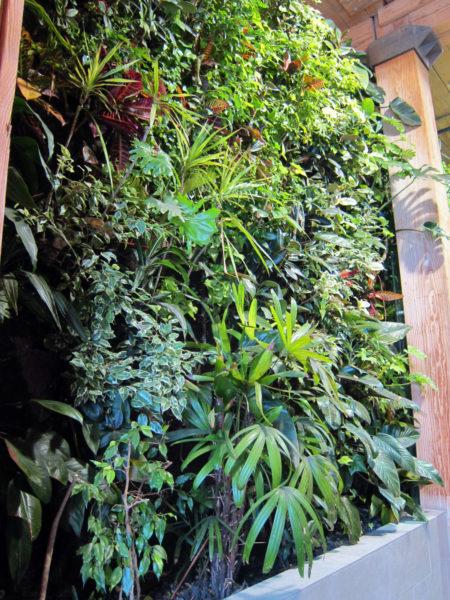 5 Benefits of Biofilters in Vertical Garden Systems