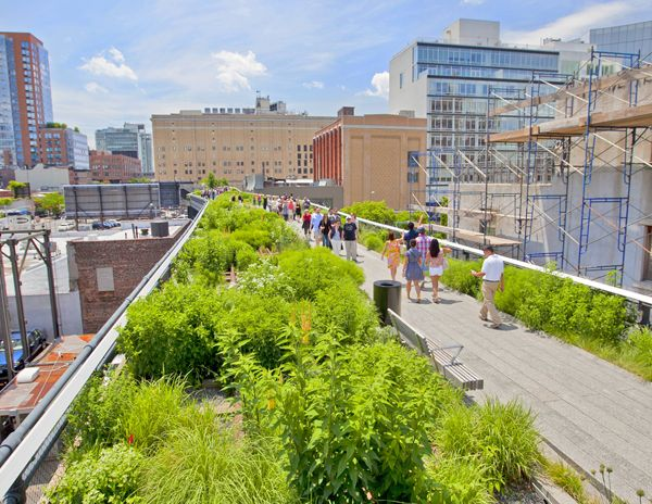 The Highline is a great example of a planting scheme increasing biodiversity in an urban area; credit: shutterstock.com