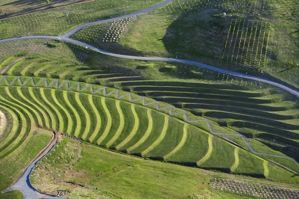 Landscape Architecture Projects of 2014 - Credit: TCL - Canberra Arboretum. Photo credit: John Gollings