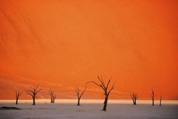 Sossusvlei-red-dunes