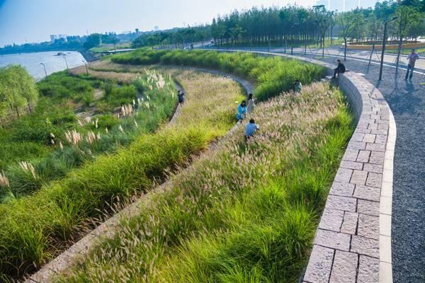 Terrace at Yanweizhou Park. Credit: Turenscape