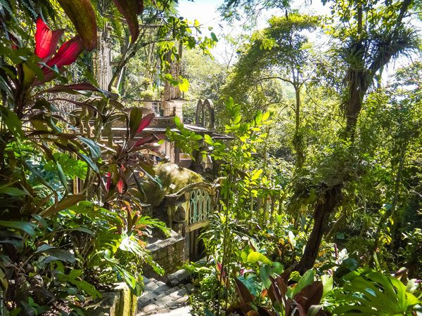 Xilitla Garden. Photo credit: Lucy Nieto