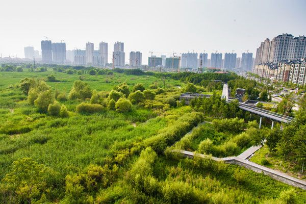 Qunli Stormwater Park. Photo credit: Turenscape