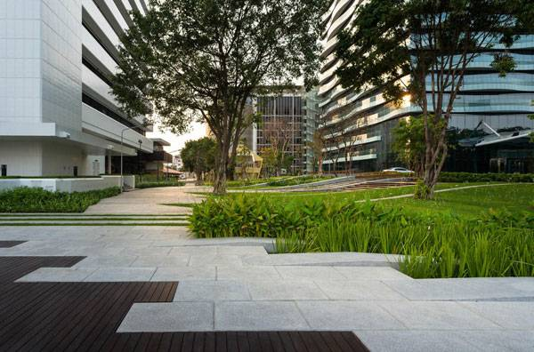 A level change difference of 2.20 meters accommodates for existing trees & program. Image courtesy of Landscape Architects of Bangkok