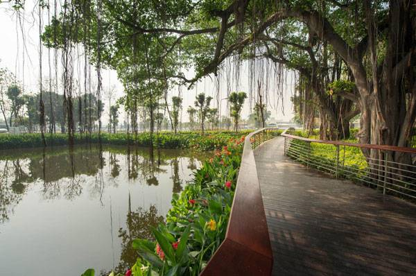 A footbridge meanders underneath a pair of preserved Weeping Figs along the edge of the existing canal, which was converted into a water retention pond and enhanced by a 'living edge' of colorful Canna.Image courtesy of Landscape Architects of Bangkok