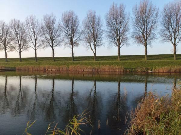 Undulating Bridge Hoofddorp. Photo courtesy of LODEWIJK BALJON landscape architects.