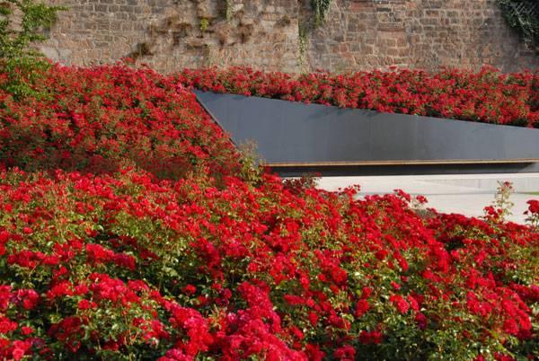 Garden of Remembrance. Photo credit: Bernd Nützel