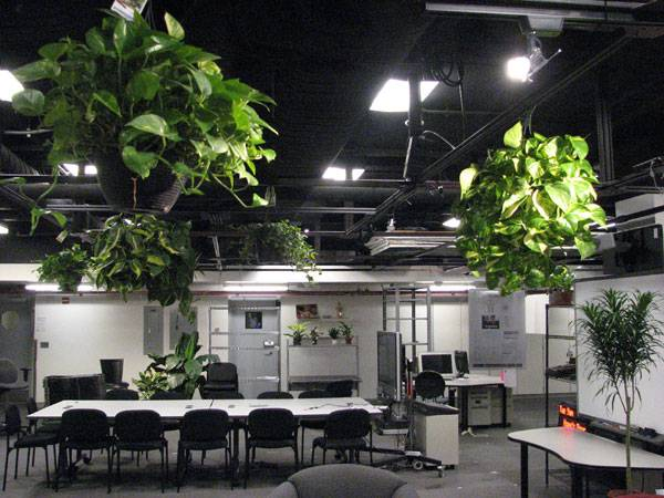 Image: The Plants of Civic Media. Photo credit: By J. Nathan Matias via Flickr, SA-CC 2.0