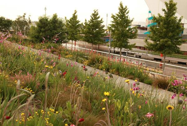 Queen Elizabeth Olympic Park London. Photo credit: Sarah Price