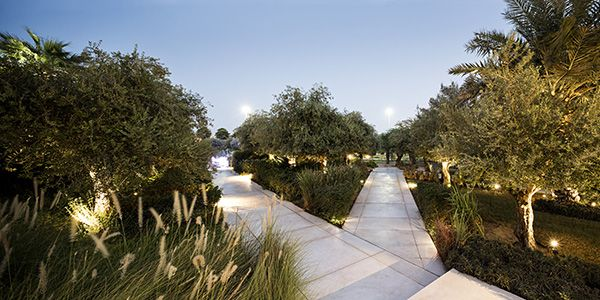 Constitution Garden vegetation, night view. Photo Credit: Nelson Garrido©