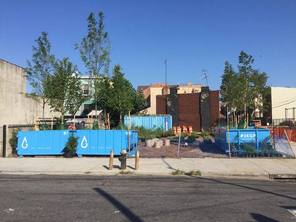 4 dumpsters have been placed at the Gowanus Canal Conservancy's pop-up nursery site at 431 Carroll St. Photo credit: Pavel Bendov