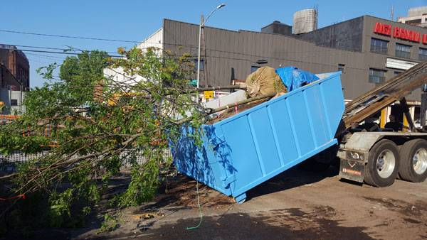 The dumpsters were moved from the nursery lot to their locations around the neighborhood. Photo credit: Pavel Bendov